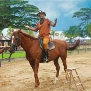 cowboy magic 6